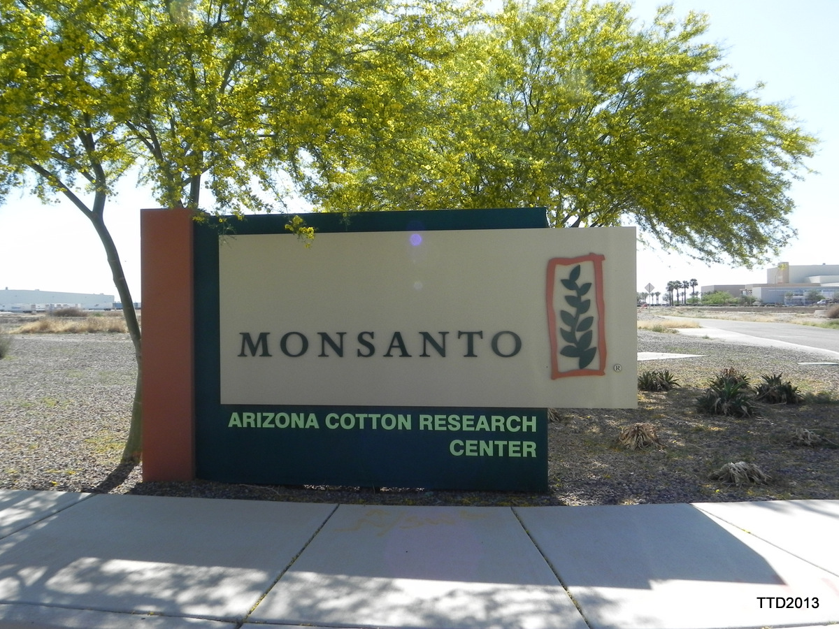MONSANTO  Casa Grande, AZ location