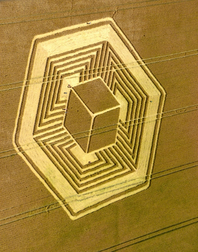 Patty greer 3-D Crop Circle UK