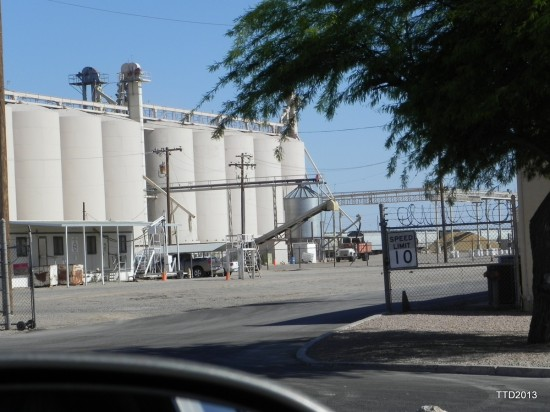 THe Truth Denied Monsanto Plant in Arizona, photo by Roxy Lopez