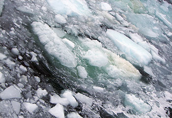 ARCTIC_methane_esaf_ice_bubbles_med