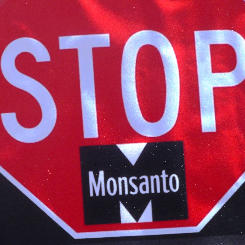 A Guide to NON GMO FOODS 2015 – The Truth Denied Alternative