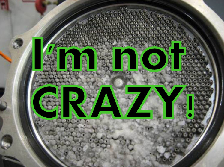 I'm Not Crazy: The Truth Denied Article