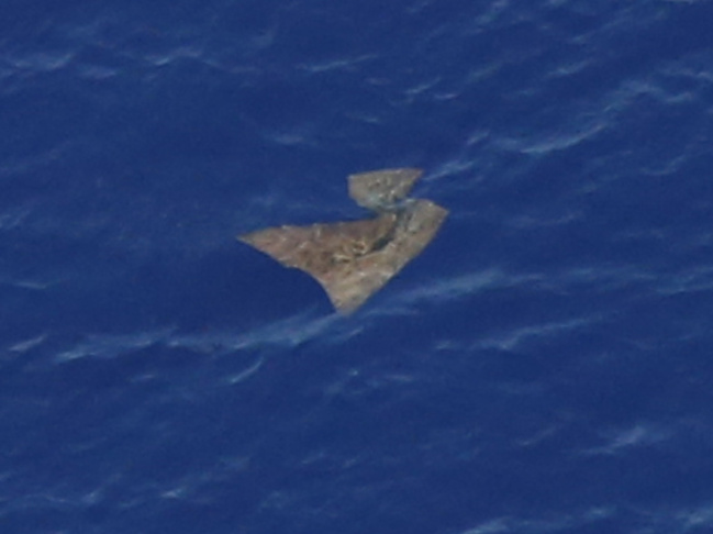 One of the objects searchers have spotted floating in the southern Indian Ocean as they look for Malaysia Airlines Flight 370. Nothing they've seen so far has been connected to the missing jet.http://www.scpr.org/
