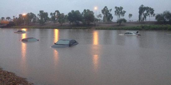 floodphoenix353029