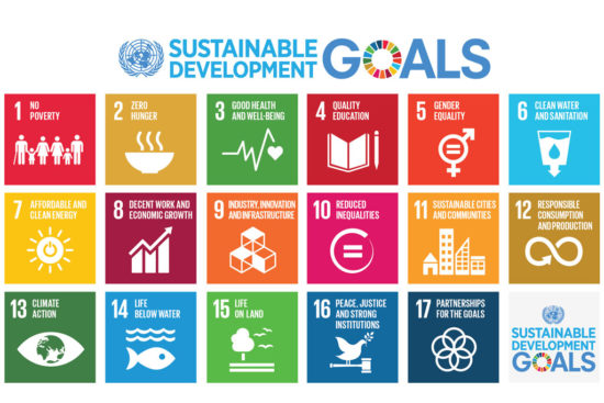 Sustainable Development Goals for AGENDA 2030