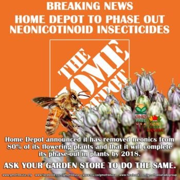 "Coalition presses for all retailers to make commitment to protect bees WASHINGTON - Home Depot (NYSE: HD), the world's largest home-improvement chain, has announced that it has removed neonicotinoid pesticides, a leading driver of global bee declines, from 80 percent of its flowering plants and that it will complete its phase-out in plants by 2018. This announcement follows an ongoing campaign and letter by Friends of the Earth and allies urging Home Depot to stop selling plants treated with neonicotinoids and remove neonic pesticides from store shelves. ""Home Depot's progress in removing neonics shows it is listening to consumer concerns and to the growing body of science telling us we need to move away from bee-toxic pesticides,"" said Lisa Archer, Food and Technology program director at Friends of the Earth U.S. ""However, we know that Home Depot and other retailers can do even more to address the bee crisis. Along with allies, we will continue to challenge retailers to engage in a race to the top to move bee-toxic pesticides off their shelves and out of garden plants as soon as possible. Bees are the canary in the coal mine for our food system and everyone, including the business community, must act quickly to protect them."""