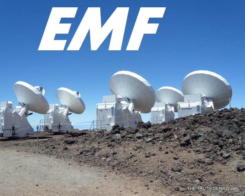 EMF the truth denied.com